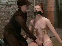 Redhead Whipped