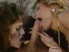 Candie Evans like 3sum under a Tree - Classic