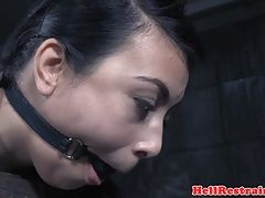 Restrained submissive whipped by maledom